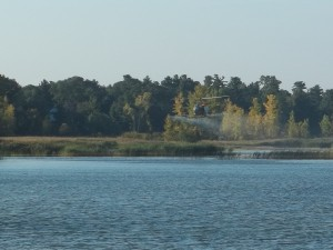 Hamilton Helicopters was in Caseville to spray phragmites along the shoreline on October 5th